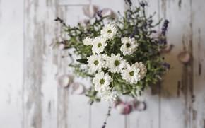 Картинка цветы, букет, flower, wood, bouquet