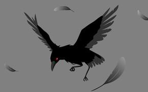 Картинка перья, серый фон, ворона, красный глаз