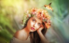 Картинка взгляд, девушка, цветы, лицо, рендеринг, птица, портрет, обработка, колибри, венок, боке, фотоарт