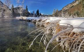 Картинка зима, трава, снег, пейзаж, горы, природа, озеро, Германия, Бавария, Альпы, леса
