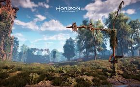 Картинка Небо, Деревья, Horizon, Sony Computer Entertainment, Guerrilla Games, Horizon: Zero Dawn, Horizon Zero Dawn
