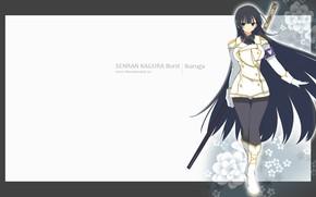 Картинка девушка, рамка, Senran Kagura