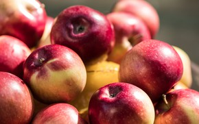 Картинка макро, яблоки, плоды