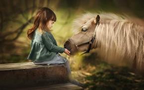 Картинка грива, девочка, пони, друзья, лошадка