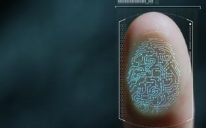 Картинка lines, finger, fingerprints