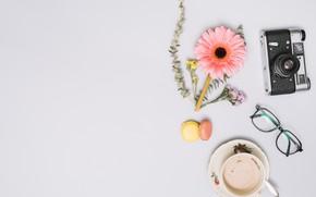Картинка цветы, кофе, печенье, очки, фотоаппарат, cup, Coffee