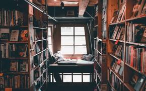 Картинка уют, книги, подушки, окно, библиотека