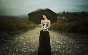 Картинка дорога, девушка, зонт