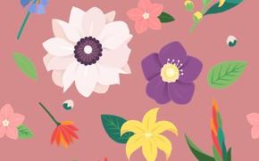 Обои цветы, фон, текстура, Flower, Vintage, Blossom