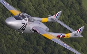 Картинка De Havilland DH-115 Vampire (T11), De Havilland Vampire, RAF, Vampire, Учебно-боевой, Истребитель, de Havilland Aircraft …