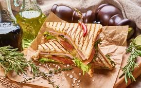 Картинка масло, сэндвич, розмарин, панини