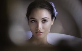 Картинка взгляд, девушка, портрет, Joachim Bergauer
