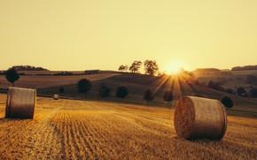 Картинка поле, осень, свет, сено