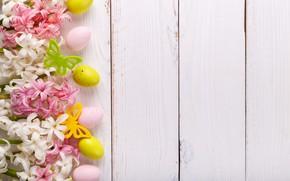 Картинка цветы, праздник, яйца, весна, пасха, гиацинты
