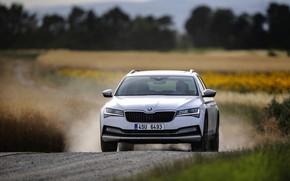 Картинка дорога, белый, Škoda, универсал, Skoda, Scout, Superb, 2020