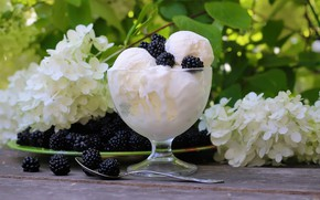 Картинка ягоды, мороженое, ежевика, сладкое, гортензия