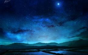 Картинка ночь, природа, росовые поля