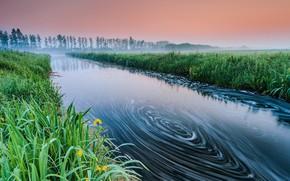 Картинка туман, река, водоворот