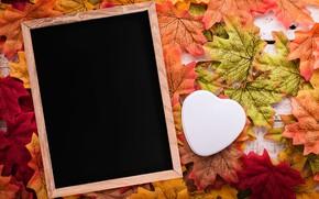 Картинка осень, листья, любовь, фон, дерево, сердце, рамка, love, heart, wood, background, autumn, leaves, romantic, осенние, …