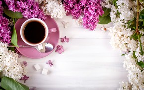 Картинка кофе, чашка, сирень, Натюрморт