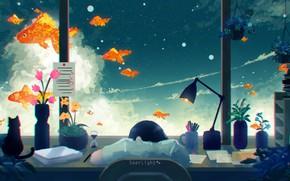 Картинка кошка, стол, девушка, спит, небо, золотые рыбки, by SeerLight