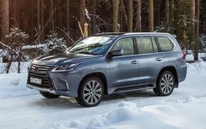 Картинка зима, природа, Lexus, 570, снег.