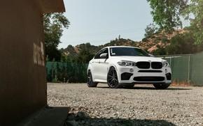 Картинка BMW, X6M, White, Sight, F86, Adaptive LED