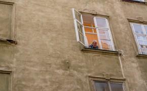Картинка окна, дед, старик, туризм, Украина, львов, из окна, архитекектура