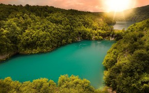 Картинка лес, река, вид сверху, зелёная вода