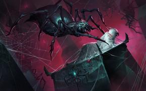 Картинка пауки, паутина, парень, Legends of Runeterra, запутан