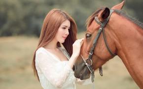 Обои взгляд, морда, девушка, природа, лицо, фон, друг, конь, милая, лошадь, портрет, руки, дружба, красавица, профиль, ...