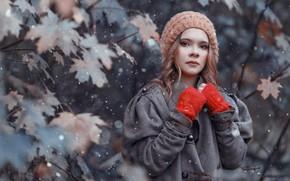 Картинка осень, листья, девушка, снег, ветки, природа, клён, шатенка, Владимир Осауленко