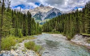 Обои камни, Канада, скалы, небо, облака, лес, Альберта, речка, деревья, горы, Банф