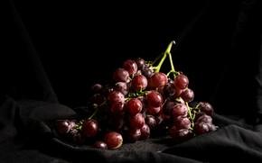 Картинка свет, виноград, гроздь, ткань, черный фон, натюрморт
