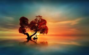 Обои небо, вода, солнце, закат, озеро, гладь, отражение, дерево, лодка, зарево, рыбаки, силуэты
