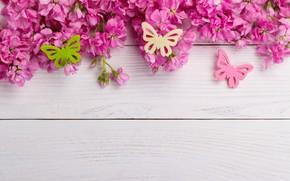 Картинка бабочки, цветы, розовые, wood, pink, flowers, spring, butterflies