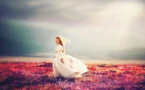 Картинка поле, природа, девочка