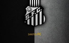 Картинка wallpaper, sport, logo, football, Santos, Brazilian Serie A
