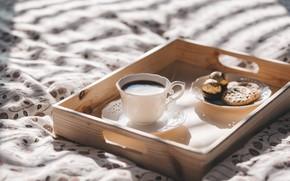 Картинка кофе, шоколад, завтрак, утро, печенье, кружка, coffe