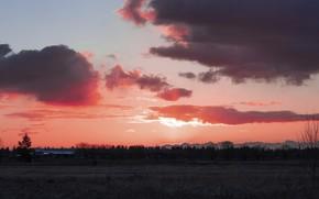 Картинка поле, пейзаж, Закат, розовый закат