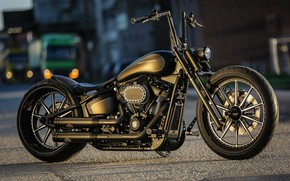Картинка Harley-Davidson, Custom, Softail, Motorbike, Thunderbike