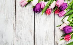 Картинка цветы, стол, обои, тюльпаны, бутоны, wood, композиция, Olena Rudo