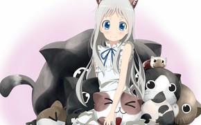Картинка кошки, коты, девочка, Невиданный Цветок, Meiko Honma