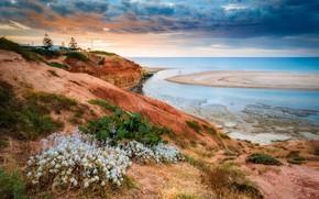 Картинка красота, природа, панорама, побережье, пейзаж, простор