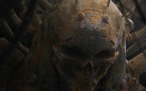 Картинка череп, монстр, оскал, пришелец, зло, киборг, art, глазницы, человеческий, Furio Tedeschi, Dormant