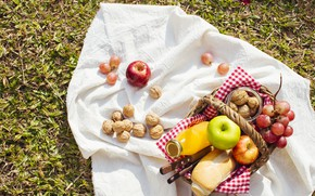 Картинка трава, корзина, яблоки, сок, хлеб, виноград, фрукты, пикник, орехи