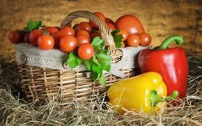 Картинка перец, помидоры, томаты, крзинка