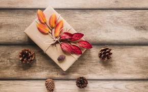 Картинка листья, фото, подарок, доски, шишки