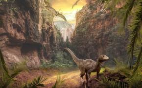 Картинка взгляд, листья, природа, скалы, растительность, динозавр, динозавры, птеродактили, юрский период
