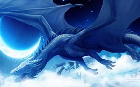 Картинка небо, ночь, драконы
